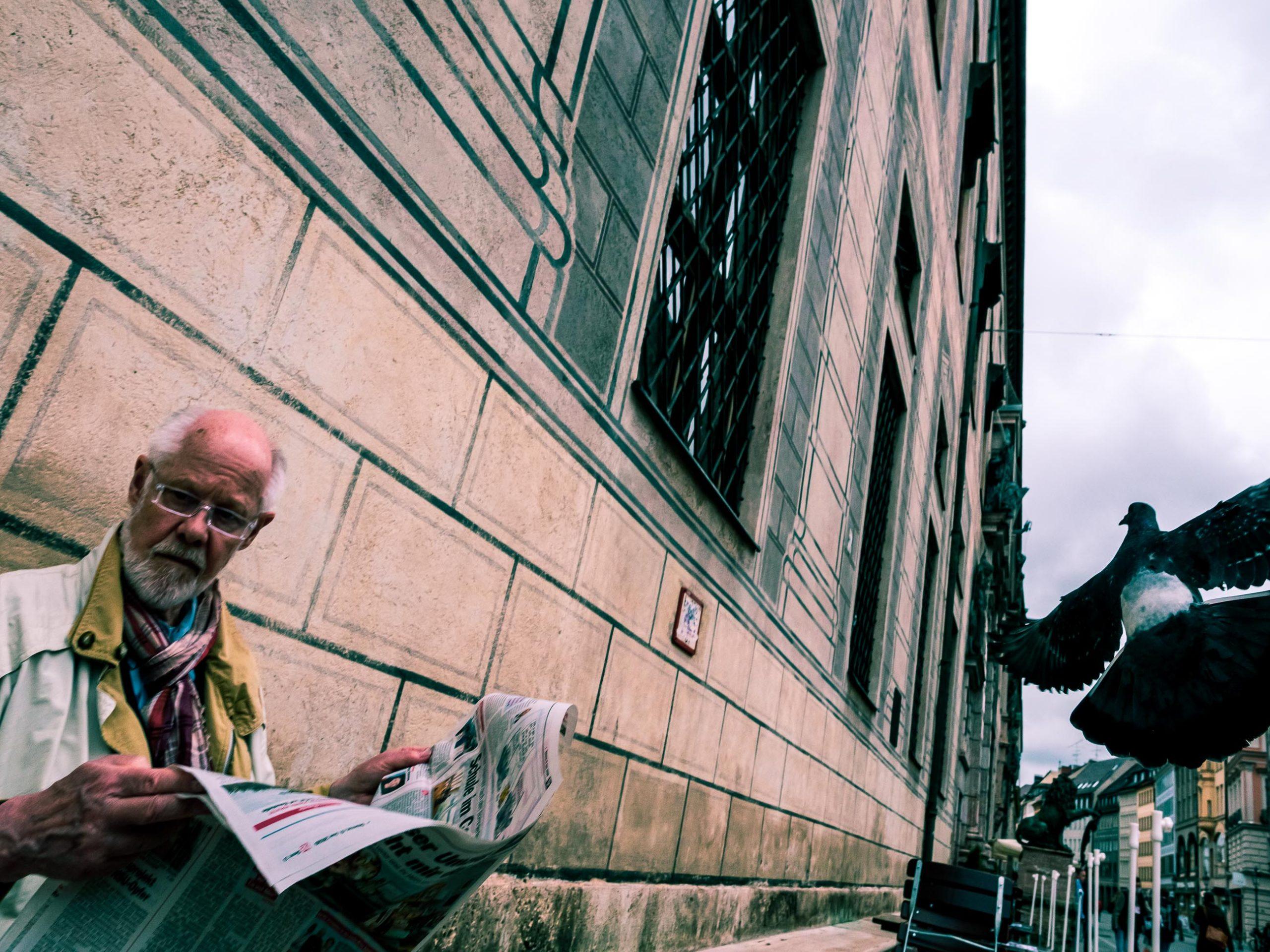 Mann liest Zeitung und Taube fliegt vorbei in der Residenzstraße in München